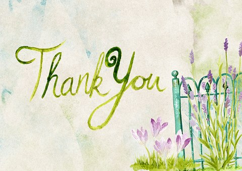 thank-you-944086__340