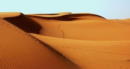desert-1007157__480.jpg