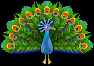 peacock-154128_1280