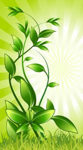 plant-158798_1280-e1564777518520.png