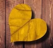 heart-1588199__480