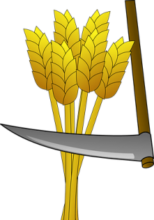 wheat-147293__480.png