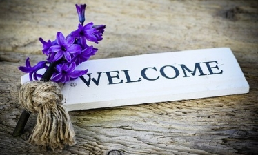 welcome-hyacinth-2-772390__340.jpg