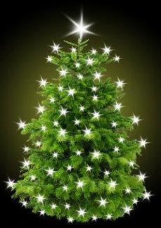 christmas-tree1768935__340